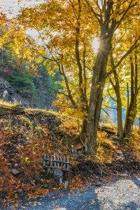 Jim-Thorpe-Autumn-2