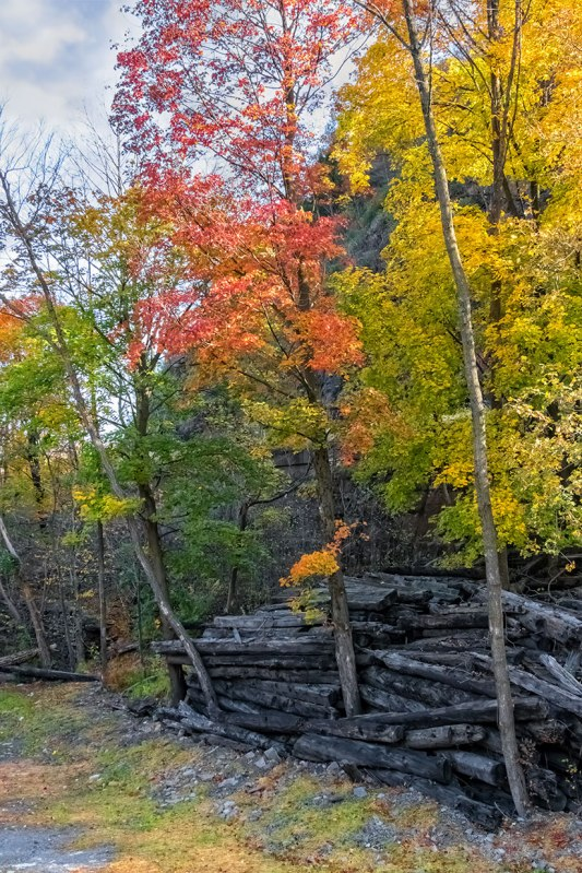 Jim-Thorpe-Autumn-6