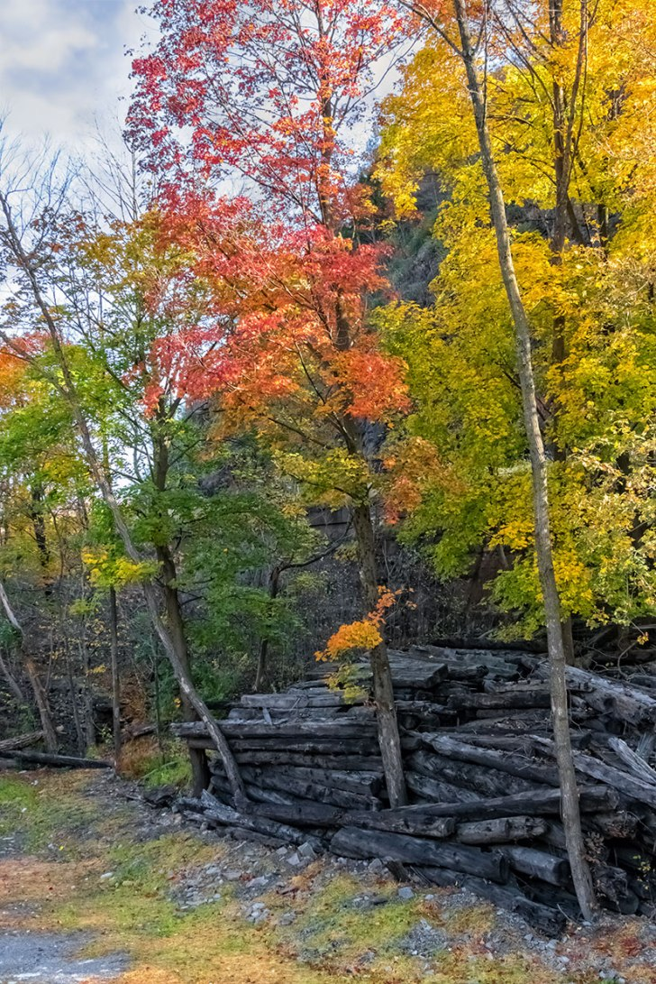 Jim-Thorpe-Autumn-6