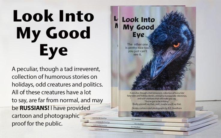 Look-Into-My-Good-Eye-Ad