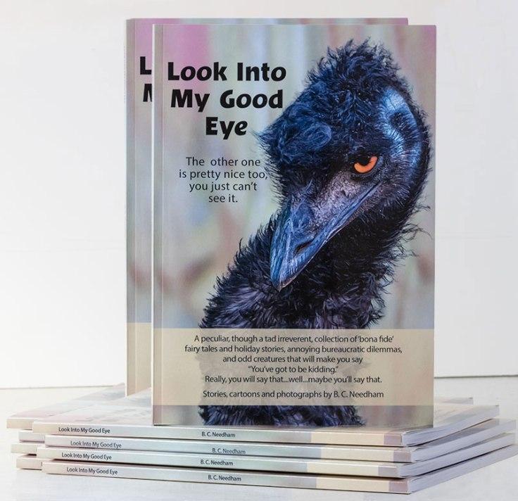 Look-Into-My-Good-Eye