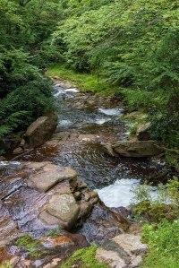 Hickory-Run-Stream-1