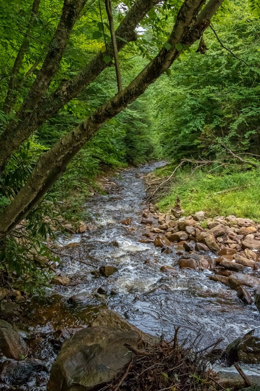 Hickory-Run-Stream-2